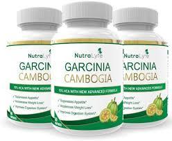 Garcinia cambogia - voor afvallen - werkt niet - review - radar